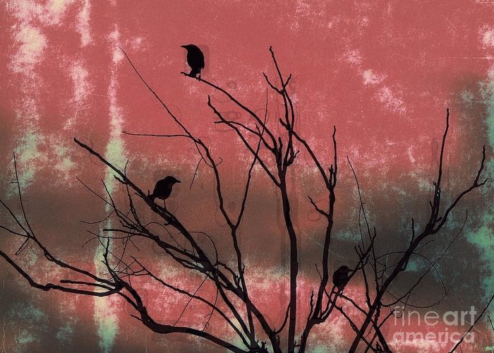 Crows Greeting Card featuring the photograph Crows The Watcher by Sacred Muse