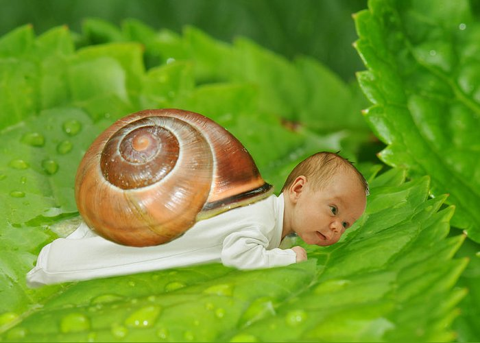 Beautiful Greeting Card featuring the photograph Cute Baby Boy With A Snail Shell by Jaroslaw Grudzinski