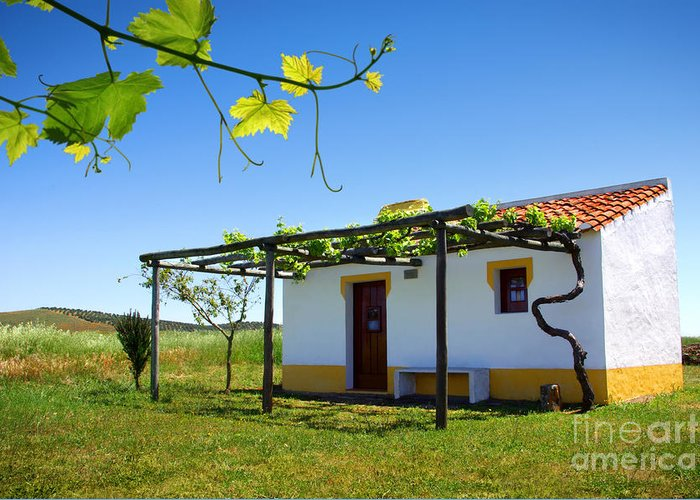 Alentejo Greeting Card featuring the photograph Cute House by Carlos Caetano