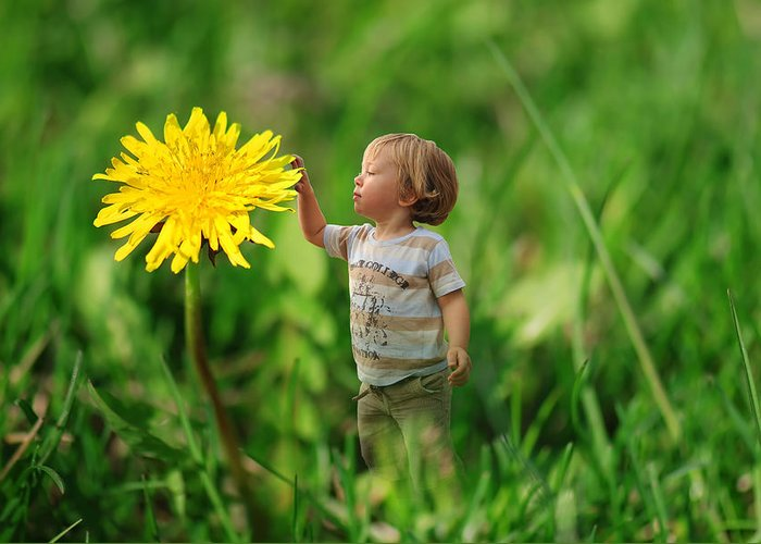 Beautiful Greeting Card featuring the photograph Cute Tiny Boy Playing In The Grass by Jaroslaw Grudzinski