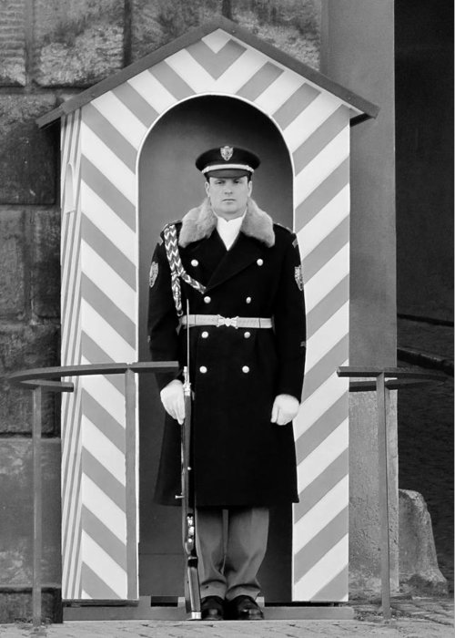 Honor Greeting Card featuring the photograph Czech Soldier On Guard At Prague Castle by Christine Till