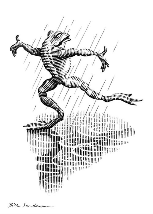 Common Frog Greeting Card featuring the photograph Dancing In The Rain, Conceptual Artwork by Bill Sanderson