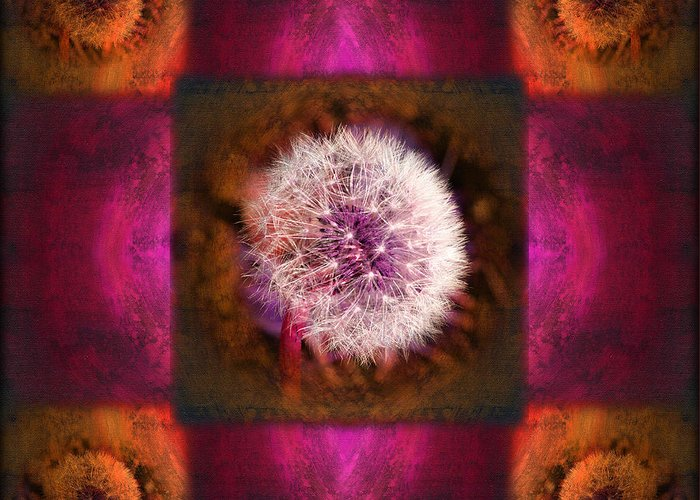 Fantasy Greeting Card featuring the photograph Dandelion In Flame by Laura Iverson