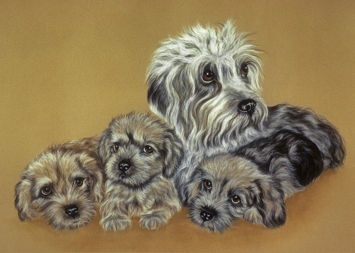 Dog Greeting Card featuring the pastel Dandie Dinmont Terriers by Patricia Ivy