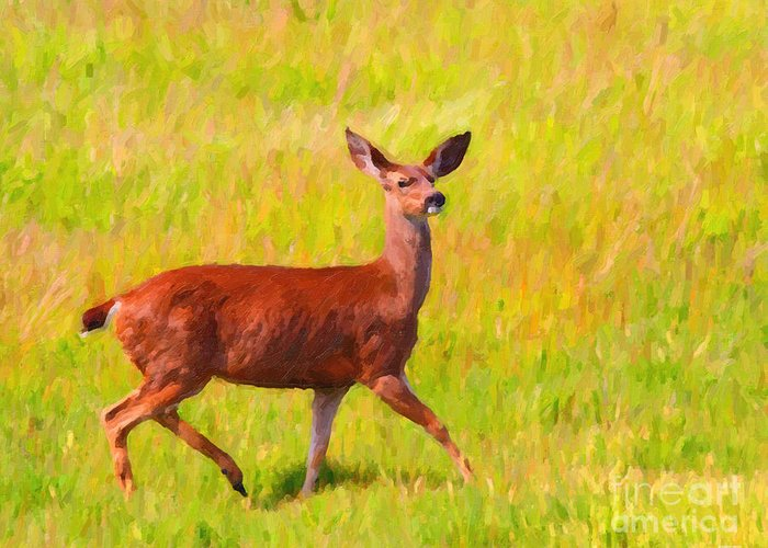 Animal Greeting Card featuring the photograph Deer In The Meadow by Wingsdomain Art and Photography