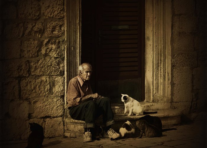Cat Greeting Card featuring the photograph Dementia by Andrew Paranavitana