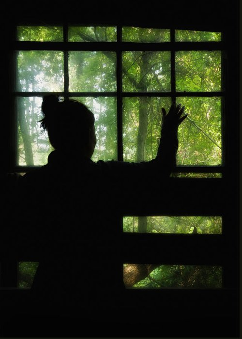 Silhouette Greeting Card featuring the photograph Desperate Ways by Evelina Kremsdorf