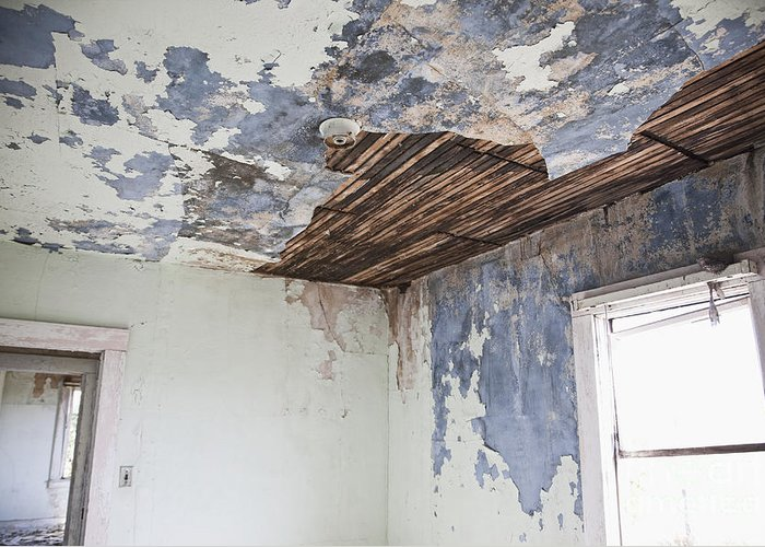 Abandoned Greeting Card featuring the photograph Deteriorating Ceiling In An Abandoned House by Jetta Productions, Inc