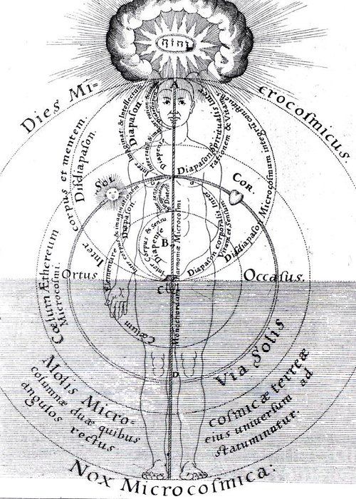 History Greeting Card featuring the photograph Dies Microcosmicus, Nox Microcosmica by Science Source