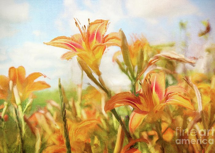 Art Greeting Card featuring the photograph Digital Painting Of Orange Daylilies by Sandra Cunningham