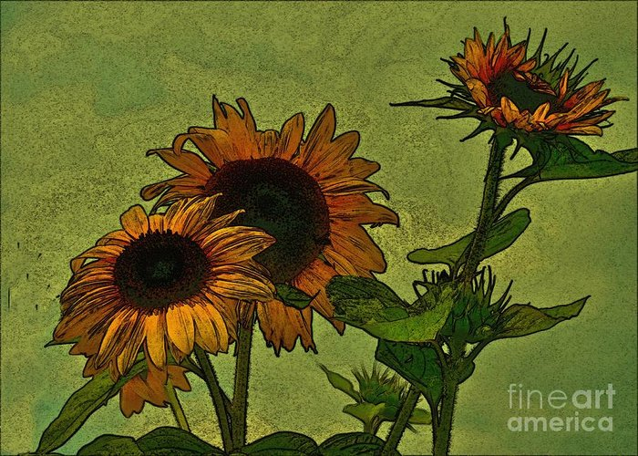 Sunflowers Greeting Card featuring the photograph Digital Sunflowers by David Hubbs