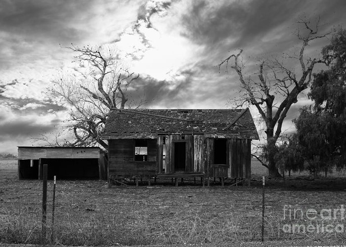 Black And White Greeting Card featuring the photograph Dilapidated Old Farm House . 7d10341 . Black And White by Wingsdomain Art and Photography