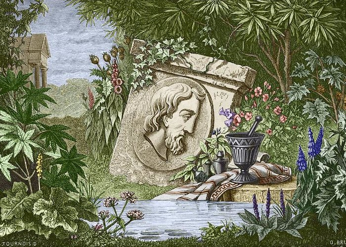 Dioscoridas Greeting Card featuring the photograph Dioscorides, Ancient Greek Physician by Sheila Terry