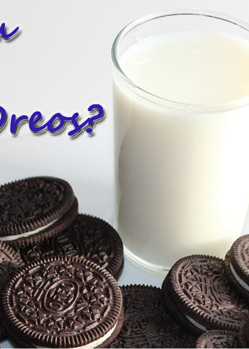 Cookies Greeting Card featuring the photograph Do You Dunk Your Oreos by Barbara Griffin