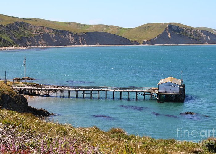 Landscape Greeting Card featuring the photograph Dock At Point Reyes Calfornia . 7d16133 by Wingsdomain Art and Photography