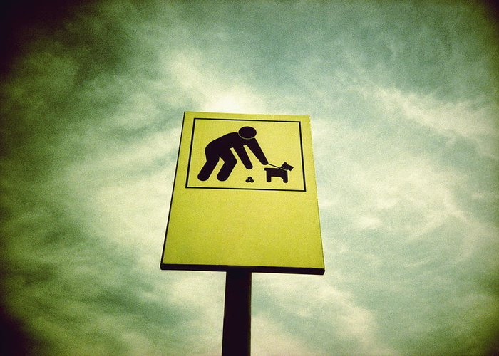 Sign Greeting Card featuring the photograph Dog Fouling Sign by Kevin Curtis