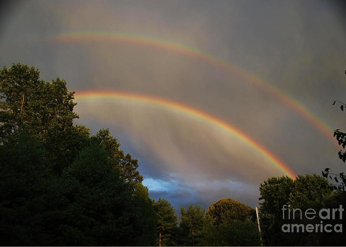 Science Greeting Card featuring the photograph Double Rainbow by Science Source
