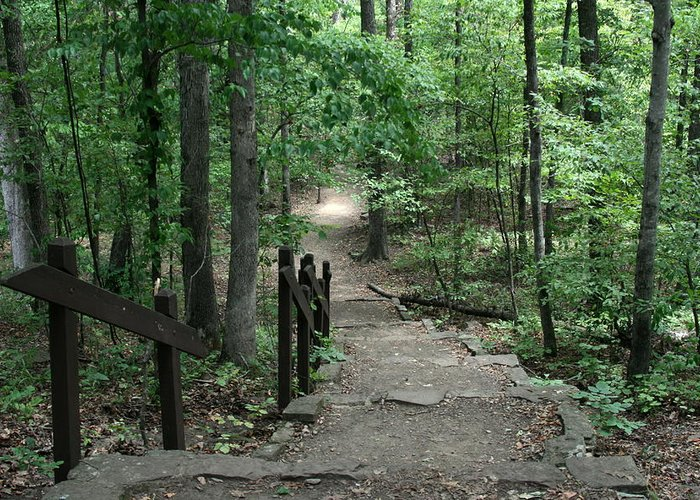 Arkansas Greeting Card featuring the photograph Down The Trail by CGHepburn Scenic Photos