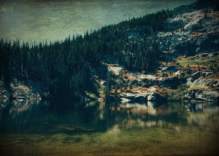 Upper Angora Lake Greeting Card featuring the photograph Dreams That Die by Laurie Search