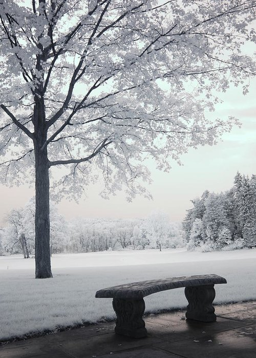 Infrared Photography Greeting Card featuring the photograph Dreamy White Blue Infrared Michigan Landscape by Kathy Fornal