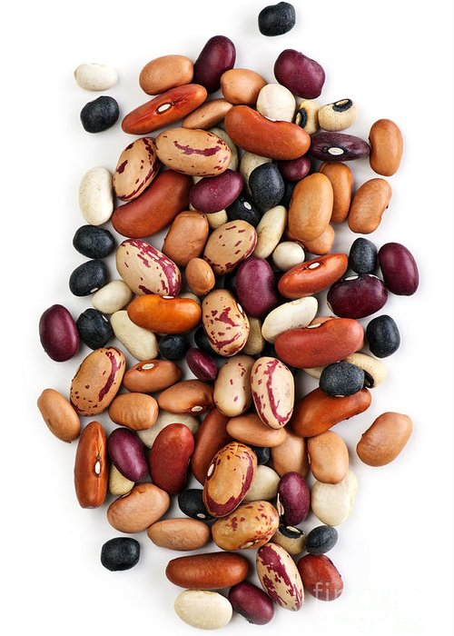 Beans Greeting Card featuring the photograph Dry Beans by Elena Elisseeva