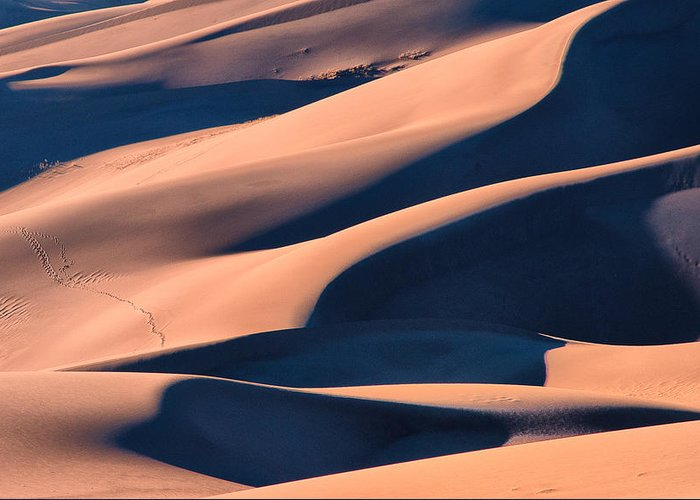 Colorado Greeting Card featuring the photograph Dune 3 by Jennifer Litchfield