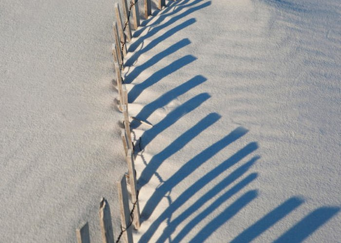 Beach Greeting Card featuring the photograph Dune Fence Graphic by Janice M LeCocq