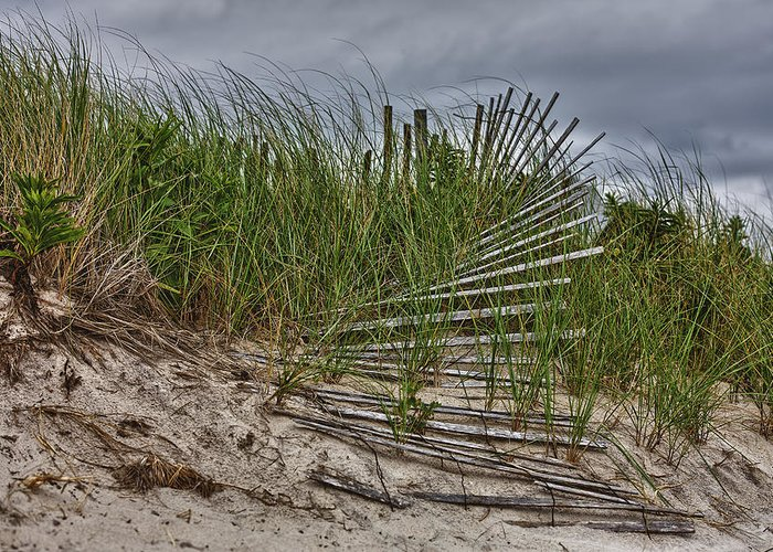 East Hampton Greeting Card featuring the photograph Dunes by Rick Berk