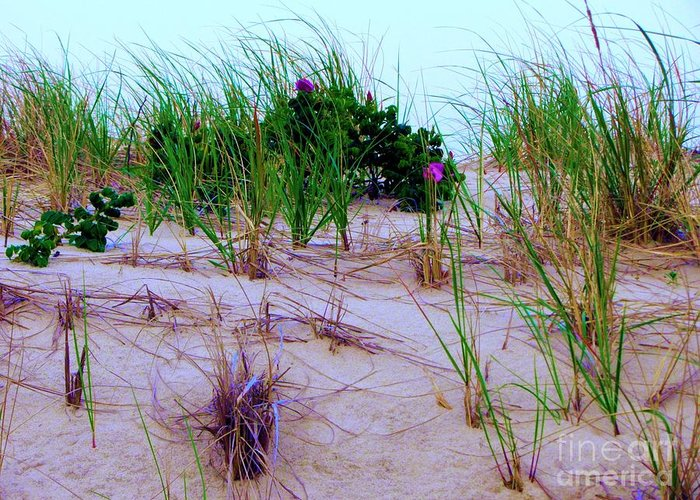 Sand Greeting Card featuring the photograph Dunes by Susan Carella