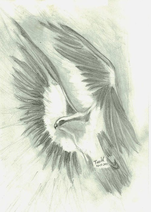 Eagle Greeting Card featuring the drawing Eagle Flying High by Tibi K
