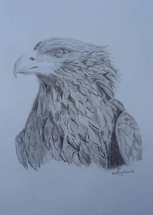 Pencil Drawing Eagle Birds Animals Wildlife Greeting Card featuring the drawing Eagle by Kathy Reast