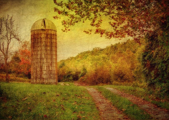 Silo Greeting Card featuring the photograph Early Autumn by Kathy Jennings