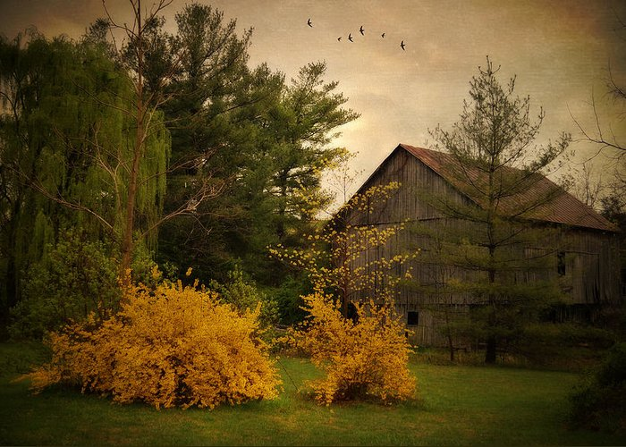 Barn Greeting Card featuring the photograph Early Spring by Kathy Jennings