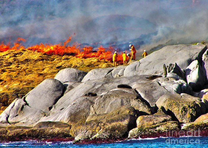 Fire Greeting Card featuring the photograph Elements by Joanne Kocwin