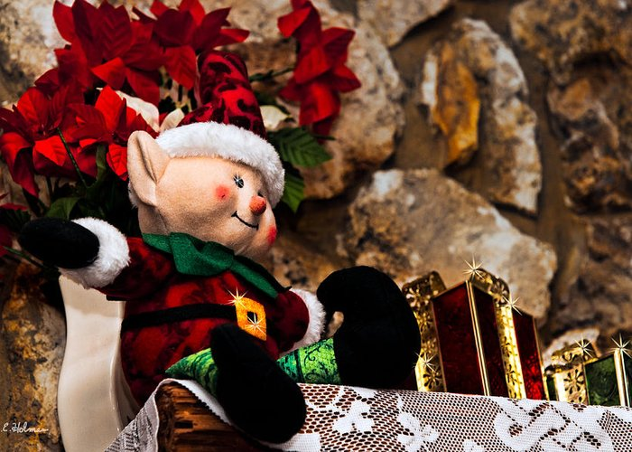 Christmas Greeting Card featuring the photograph Elf On Shelf by Christopher Holmes