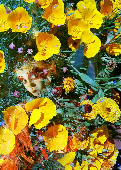 Fairy Faeire Elf Elfin Elves Poppies Flowers Nature Double Exposures Photography Fae Magic Magical Orange Pink Green Spring Child Hidden Pixie Cute Mysterious Dreamy  Greeting Card featuring the photograph Elfin Child Of Poppies by Cyoakha Grace