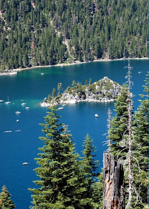 Emerald Bay Greeting Card featuring the photograph Emerald Bay Vertical by Carol Groenen