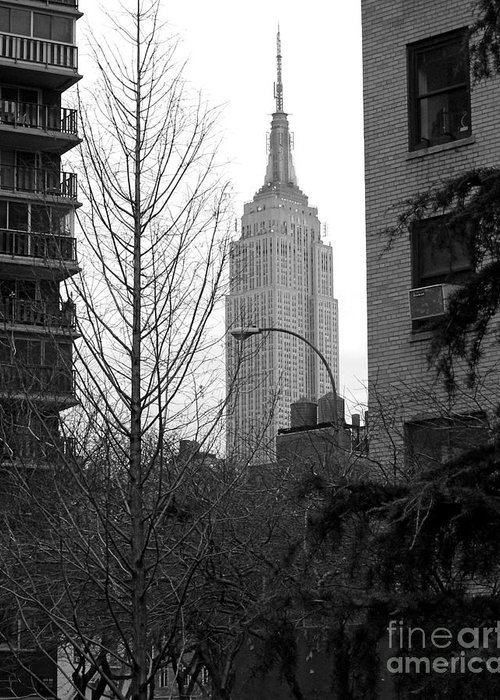 Empire State Building Greeting Card featuring the photograph Empire State Building by Mark Gilman