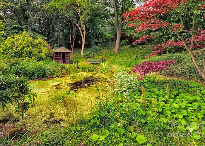 Countryside Greeting Card featuring the photograph English Garden by Adrian Evans