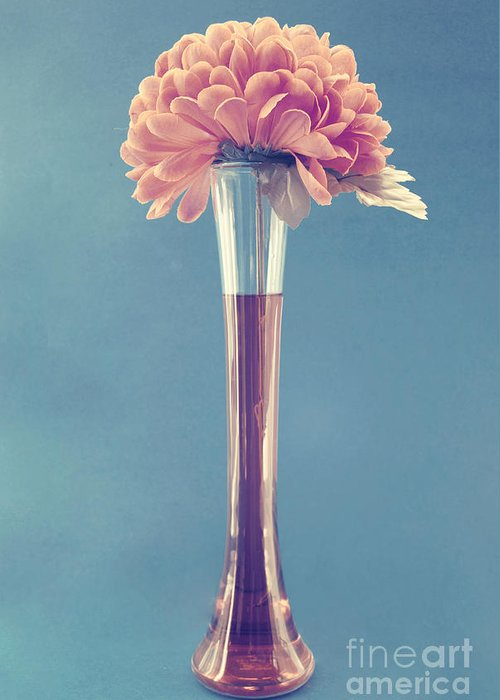 still Life Greeting Card featuring the photograph Estillo Vase - S01v3f by Variance Collections