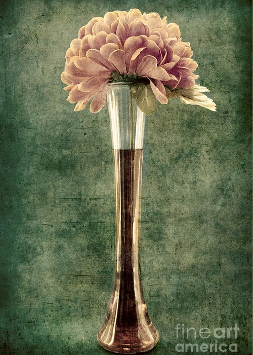 still Life Greeting Card featuring the photograph Estillo Vase - S02et01 by Variance Collections