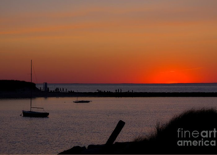 Sunset Greeting Card featuring the photograph Evening Harbor Silhouette by Douglas Armstrong