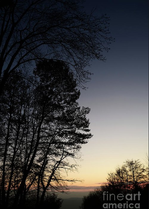 Photograph Greeting Card featuring the photograph Evening Silhouette At Sunset by Bruno Santoro