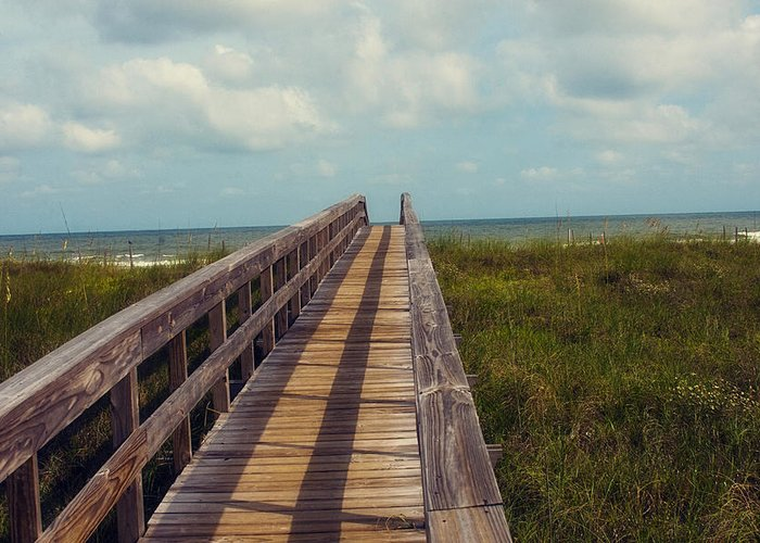 Beach Greeting Card featuring the photograph Evening Walk To The Beach by Toni Hopper