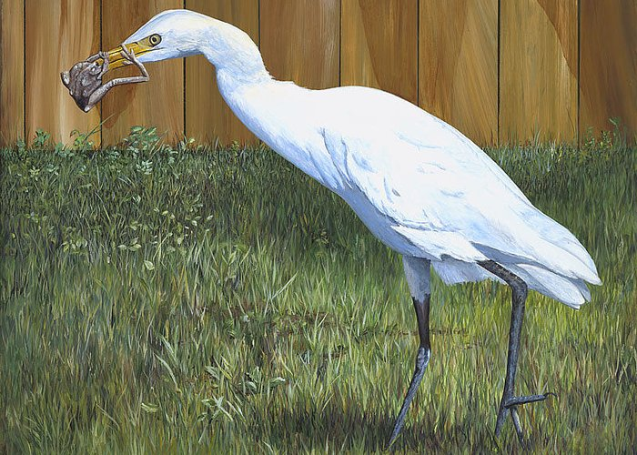 Cattle Egret Greeting Card featuring the painting Eye To Eye by AnnaJo Vahle
