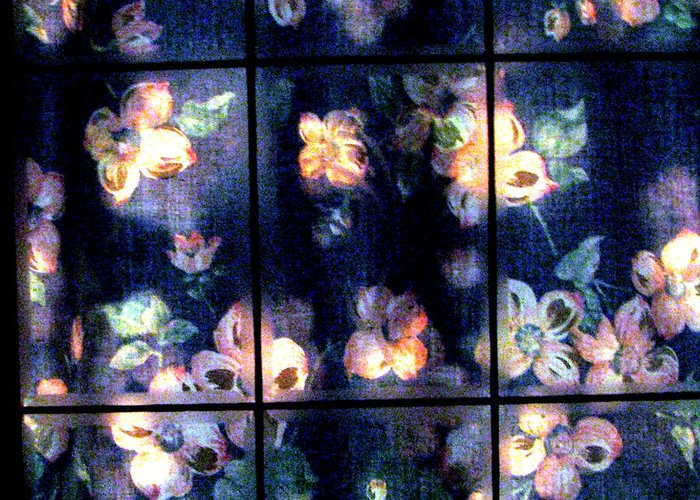 Dogwood Flowers Greeting Card featuring the photograph Faded Dogwood Window Dressing by Judyann Matthews