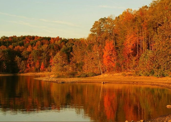 Patoka Lake Greeting Card featuring the photograph Fall At Patoka by Brandi Allbright