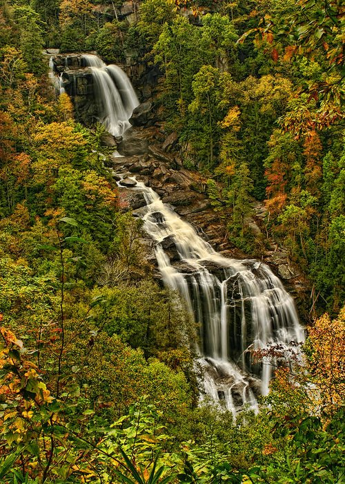Falls Greeting Card featuring the photograph Fall At Whitewater Falls by Shari Jardina