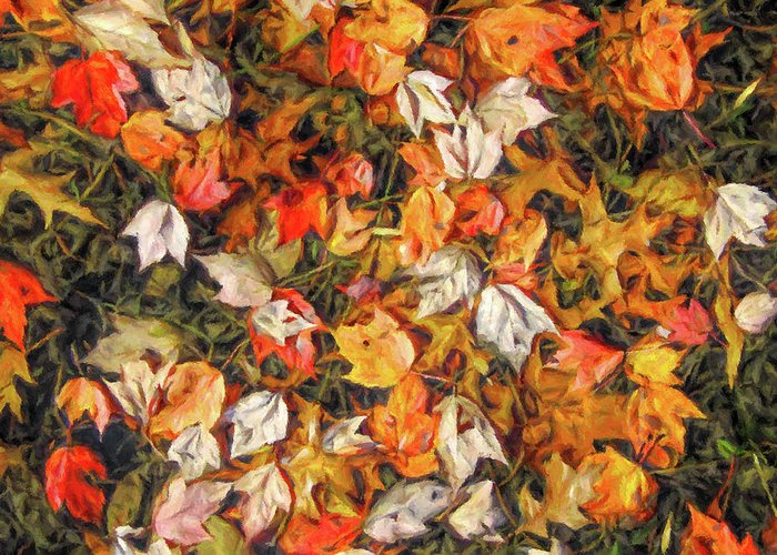 Fall Greeting Card featuring the digital art Fall Autumn Leaves On Water by Randy Steele