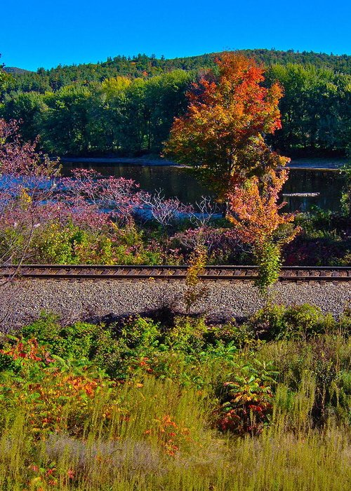 Landscape Greeting Card featuring the photograph Fall By The River 5 by George Ramos